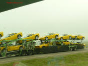 ZHZ C6 Corvette - Hertz Rental Special Edition A whole truck load of them... yeah.